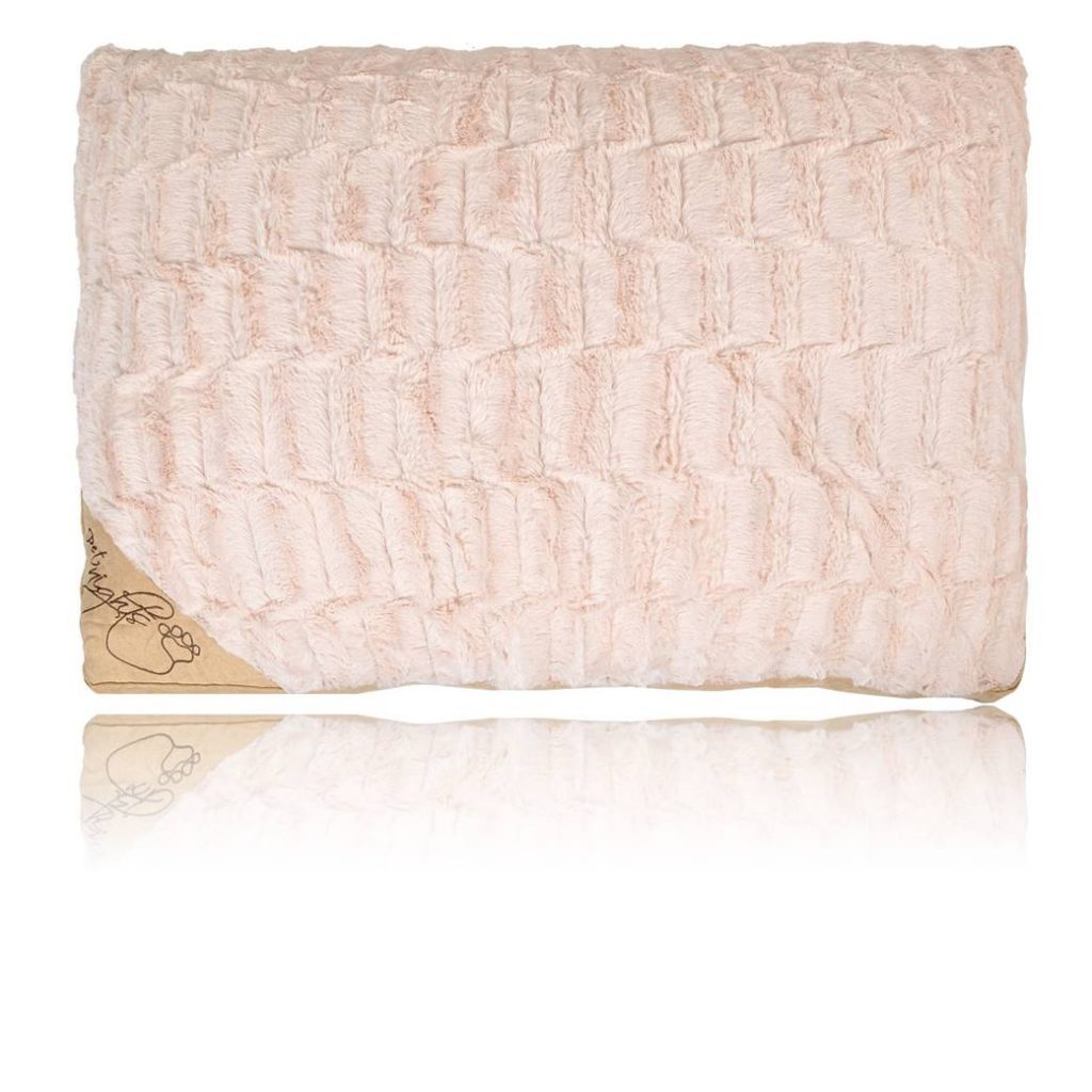 Pet_Nights_Cushion_Check_Beige_1