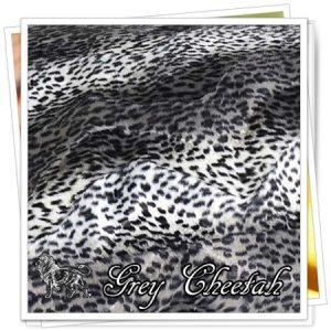 _animals_01_Grey_Cheetah