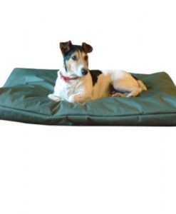 Cushion pet bed