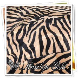 _animals_01_Antelope_Gold